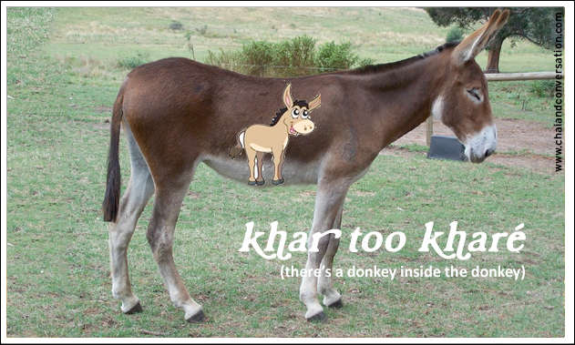 khar too khareh, there's a donkey in the donkey