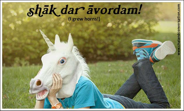 shakh daravordam, I grew horns