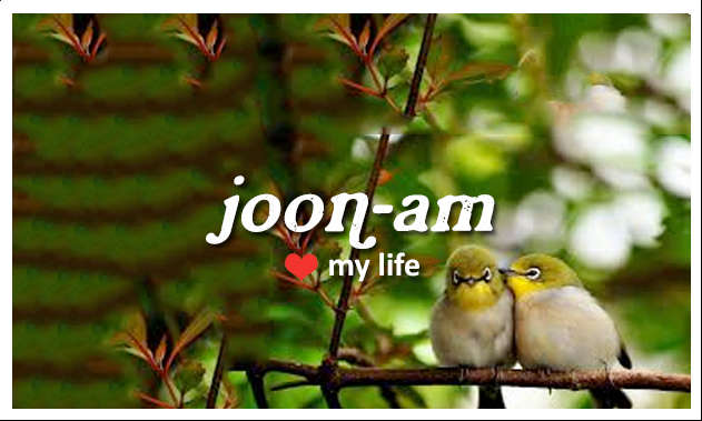 joonam, my life