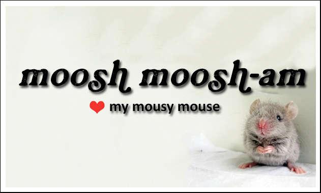 moosh moosham, my mouse