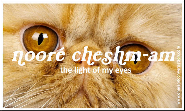 noore cheshmam, the light of my eyes